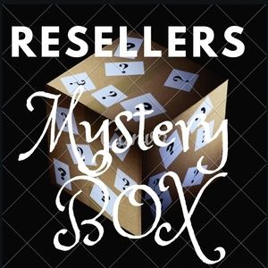 Reseller Mystery Bundle Clothing Lot